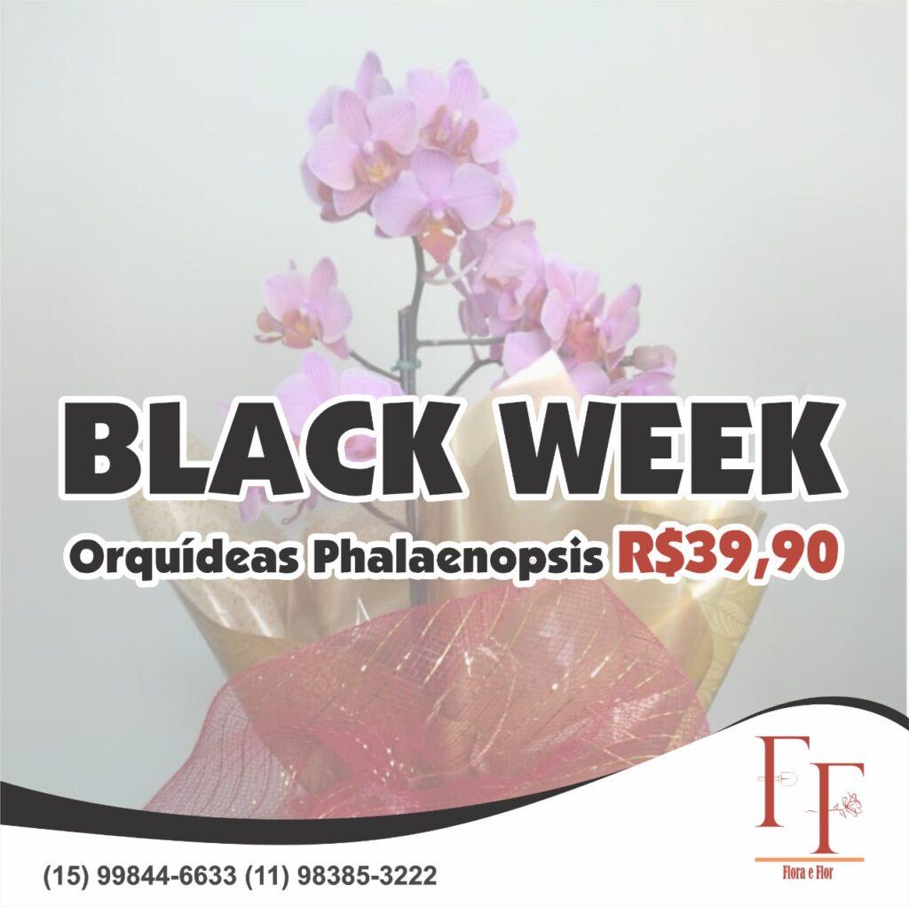 OFERTA ESPECIAL BLACK WEEK